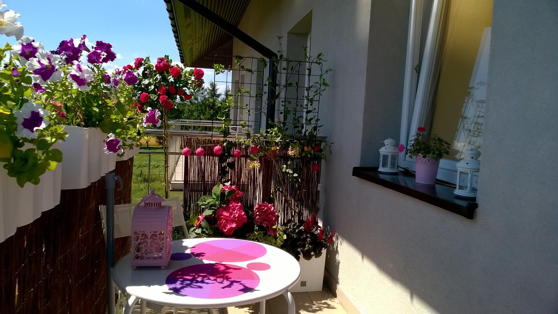 balkon-ogrody